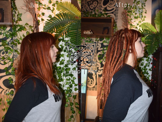 Dreaderstellung, neue Dreads in Berlin 029 ( 45 Dreads mit Extensions)