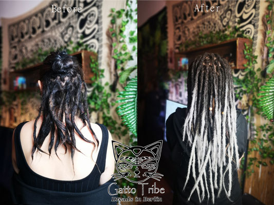 Dreaderstellung, neue Dreads in Berlin 056 ( 38 Dreads mit Extensions)