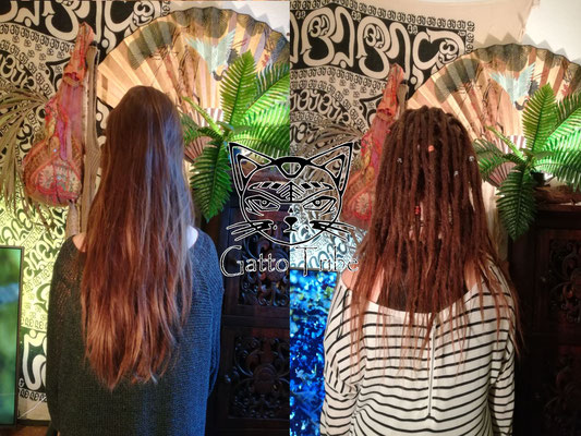 Dreaderstellung, neue Dreads in Berlin 001 (52 Dreads ohne Extensions)