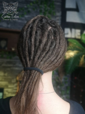 Dreaderstellung, neue Dreads in Berlin 062 ( 41 Dreads ohne Extensions)