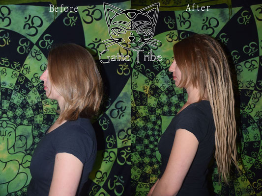 Dreaderstellung, neue Dreads in Berlin 030 (63 Dreads mit Extensions)