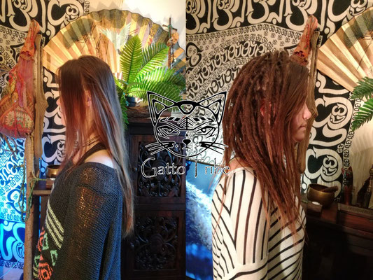 Dreaderstellung, neue Dreads in Berlin 002 (52 Dreads ohne Extensions)
