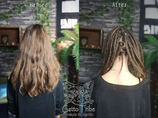 Dreaderstellung, neue Dreads in Berlin 063 ( 41 Dreads ohne Extensions)