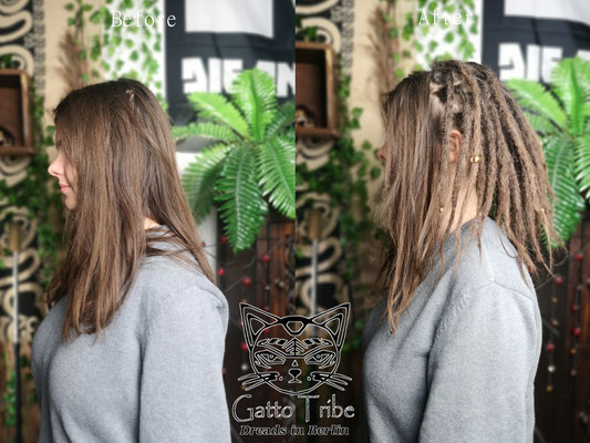 Dreaderstellung, neue Dreads in Berlin 060 ( 46 Dreads ohne Extensions)