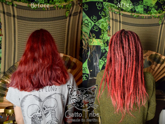 Dreaderstellung, neue Dreads in Berlin 050 ( 66 Dreads mit Extensions)