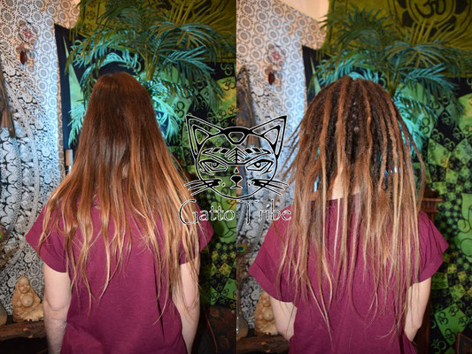 Dreaderstellung, neue Dreads in Berlin 007 (59 Dreads mit Extensions)