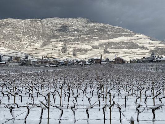 02. Jänner 2021: Auch das neue Jahr beginnt mit Schnee