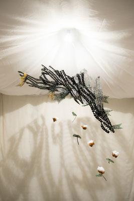 綿花の成長過程を描いたオブジェ