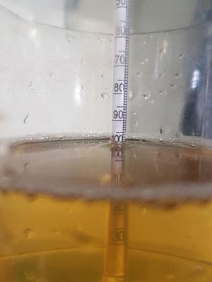100 Oechsle - Chardonnay