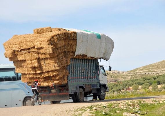 Transporthilfe