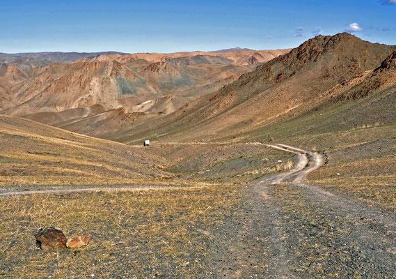 Bergpiste südlich von Shinejinst, Mongolei