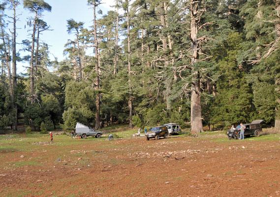 Biwak im Forêt des Cèdres
