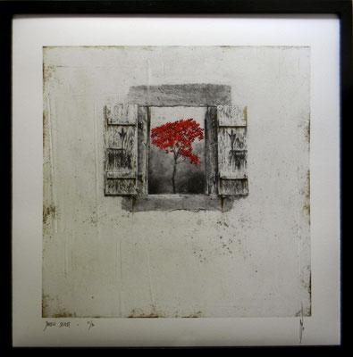 Antoine Josse - Jardin secret - Réf 266 - N°5/30 - 50 cm x 50 cm - Encadrement sous-plexi contour métal noir