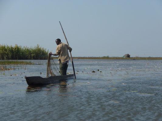 Tanzania und Zambia; Bangweulu Sümpfe