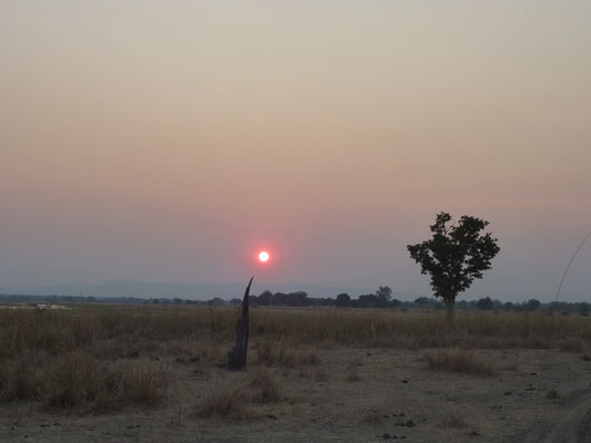Tanzania und Zambia; North Luangwa NP