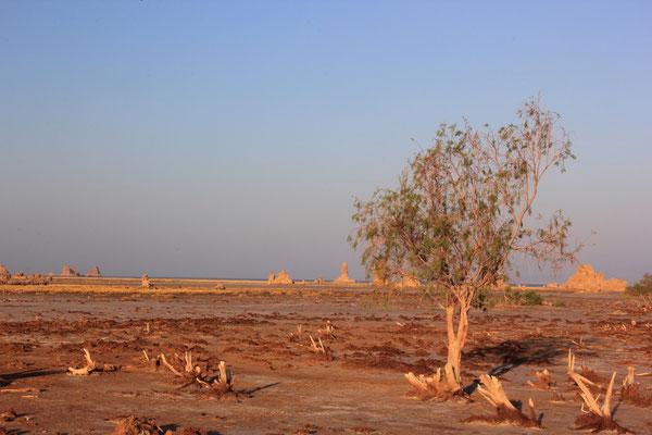 Djibouti; Lac Abbé