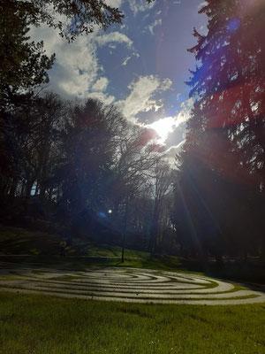 Das Labyrinth im Kurpark (Bild Sigrid Klein)