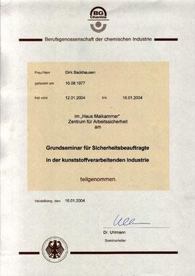 Dirk Backhausen - Seminar für Sicherheitsbeauftragte