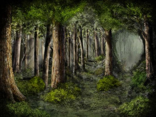 Thüringer-Wald im Frühling