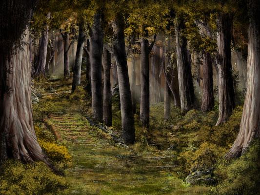 Herbstwald 01