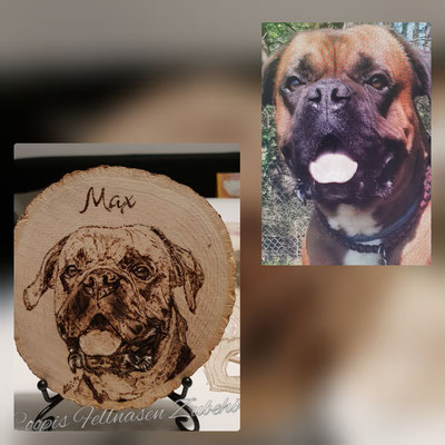 Boxer Brandmalerei, Foto Holz, Holzgravur, Holz brennen, Bilder auf Holz, Holzbild, Tiere auf Holz, Tierfoto auf Holz,  Hund auf Holz, Holzfoto Tier, Haustier Holz, Pyrographie