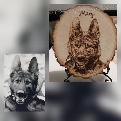 Brandmalerei, Foto Holz, Holzgravur, Holz brennen, Bilder auf Holz, Holzbild, Tiere auf Holz, Tierfoto auf Holz,  Hund auf Holz, Holzfoto Tier, Haustier Holz, Pyrographie