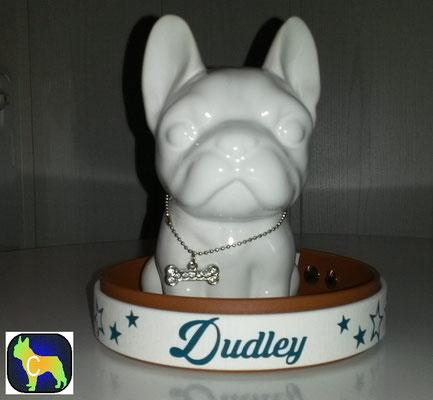 BBiothane Hundehalsband mit Plotterfolie Namen Druck, Hundehalsband mit Druck, Hundehalsband mit Namen, bedrucktes Hundehalsband, biothane Hundehalsband