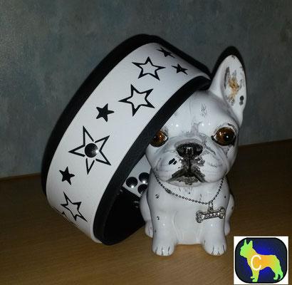 Biothane Hundehalsband mit Plotterfolie Namen Druck