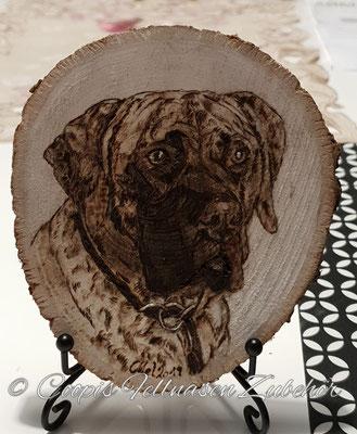 Cane Corso Brandmalerei, Brandmalerei, Foto Holz, Holzgravur, Holz brennen, Bilder auf Holz, Holzbild, Tiere auf Holz, Tierfoto auf Holz,  Hund auf Holz, Holzfoto Tier, Haustier Holz, Pyrographie