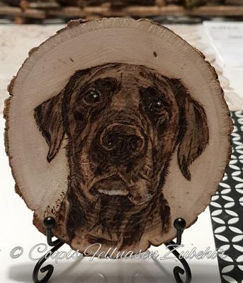 Labrador Brandmalerei , Brandmalerei, Foto Holz, Holzgravur, Holz brennen, Bilder auf Holz, Holzbild, Tiere auf Holz, Tierfoto auf Holz,  Hund auf Holz, Holzfoto Tier, Haustier Holz, Pyrographie