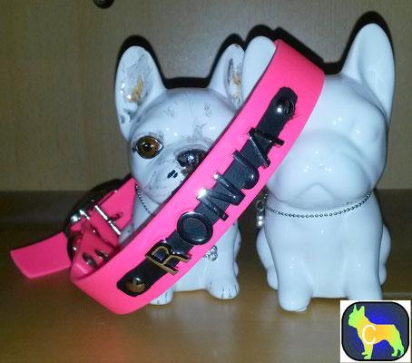 Biothane Hundehalsband Namen Metallbuchstaben