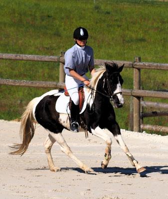 Aurélie et Dream en épreuve jeunes chevaux