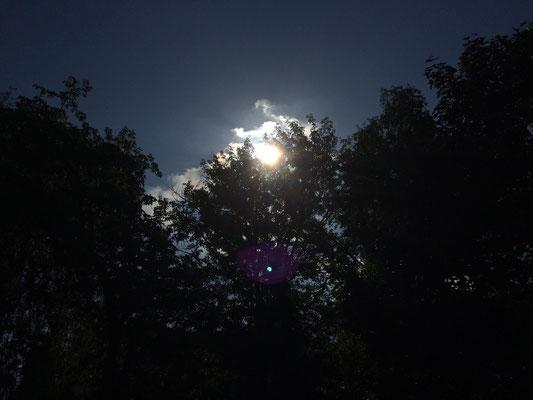 Die Sonne strahlte vom Himmel