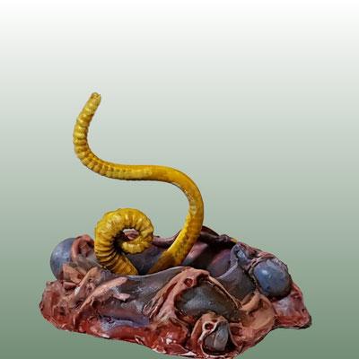 Small Tentacular Portal