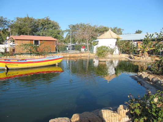 Kleiner Teich auf dem Campingplatz
