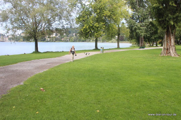 Der Uferweg führt auch durch einen Park