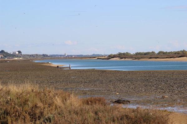 Lagune bei Ebbe
