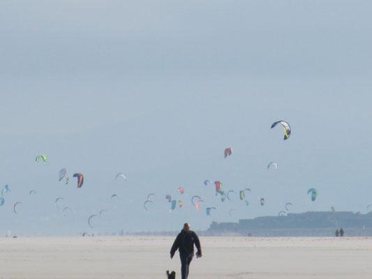 Kiter und Lenkdrachen