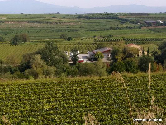 Blick von oberen Weinhanglagen auf den Platz