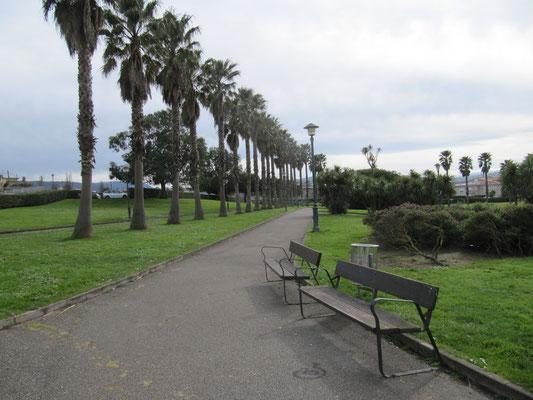 Park Rinconin