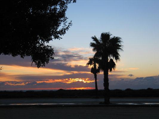 "Abendstimmung im Naturschutzgebiet ""Bahia de Cadiz"""