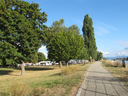 Rheinufer mit Blick auf den Wohnmobilstellplatz