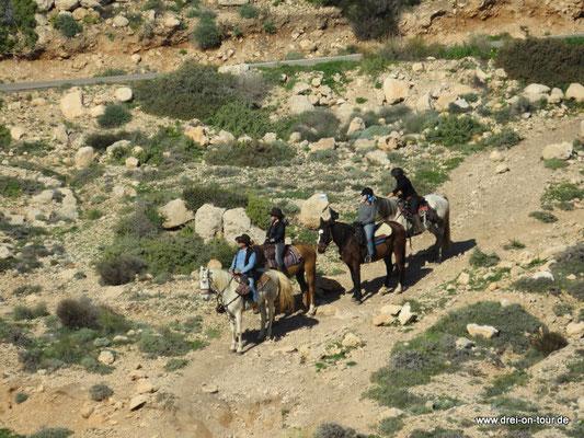 Reitergruppe unterwegs