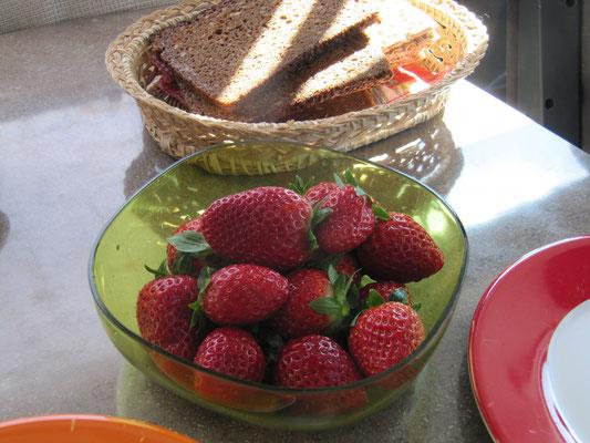 ein Genuss - Erdbeeren aus Portugal ! vom Markt