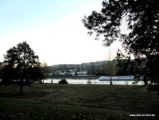ein schönes Fleckchen direkt am Rheinufer in Koblenz