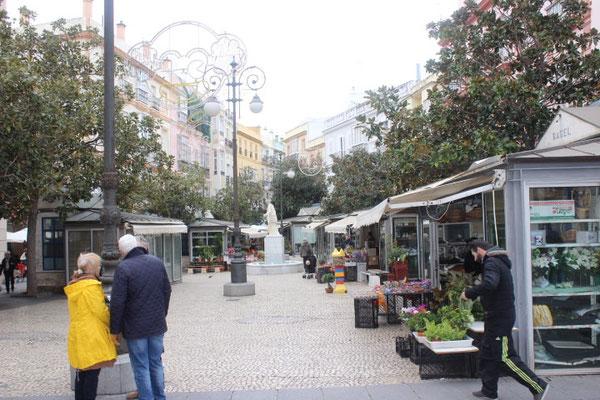 Plaza de Florales