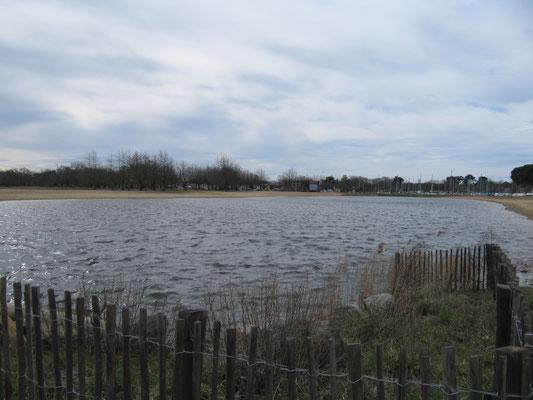 in unmittelbarer Nähe der See