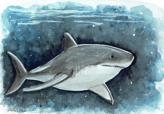 weißer Hai - Mai 2020 - A6