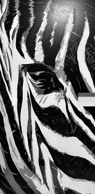 STRIPES 2 - Zebrakopf 110 x 217 cm - nicht verfügbar