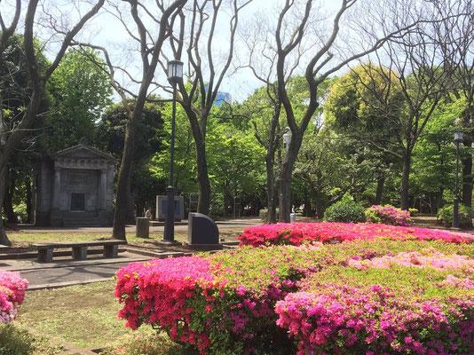 4月の憲政記念会館前広場 日本水準原点と電子基準点「東京千代田」(yama)
